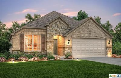 New Braunfels TX Single Family Home For Sale: $315,198