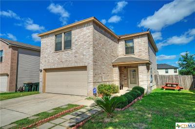 San Marcos Single Family Home For Sale: 199 Valero