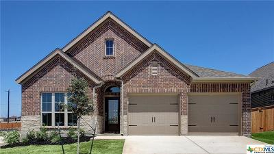 San Antonio Single Family Home For Sale: 14723 Running Wolf