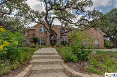 San Antonio Single Family Home For Sale: 17215 NE Eagle Hollow Drive
