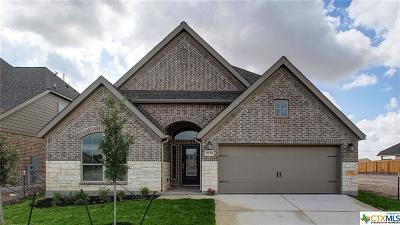 San Antonio Single Family Home For Sale: 9138 Yearling Street