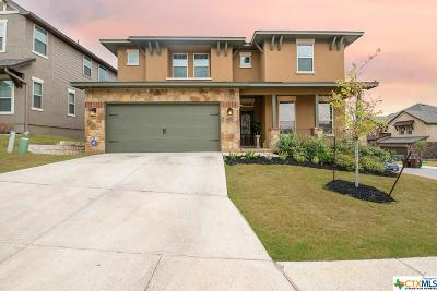 San Antonio Single Family Home For Sale: 23002 Copper Gully