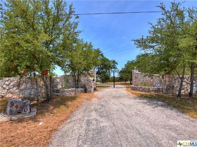 Canyon Lake Single Family Home For Sale: 9450 Fm 306