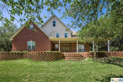 Belton Single Family Home For Sale: 9801 W Fm 93