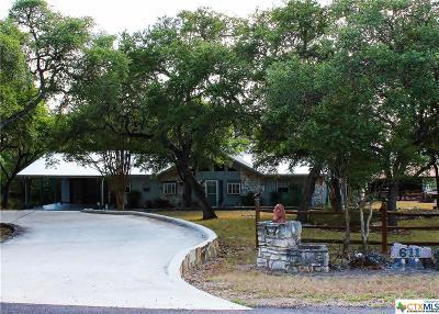 New Braunfels Single Family Home For Sale: 611 Wild Turkey Run