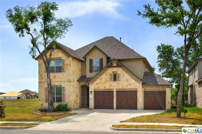 San Marcos Single Family Home For Sale: 424 Ancient Oak