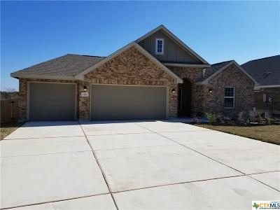 New Braunfels TX Single Family Home For Sale: $338,499