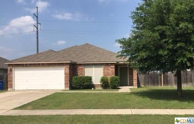 New Braunfels TX Single Family Home For Sale: $206,997