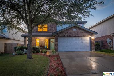 New Braunfels Single Family Home For Sale: 228 Goliad