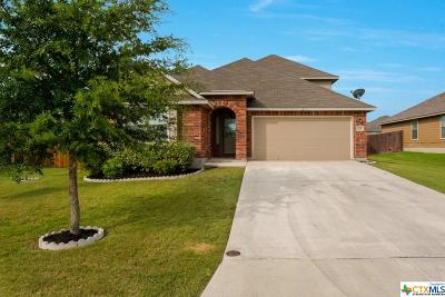 New Braunfels Single Family Home For Sale: 628 Whooping Crane