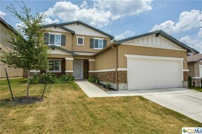 San Antonio Single Family Home For Sale: 10210 Relic Oaks