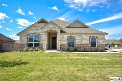Temple TX Single Family Home For Sale: $248,600