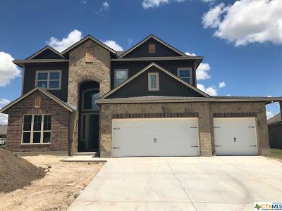 Bell County Single Family Home For Sale: 5301 Othello Drive