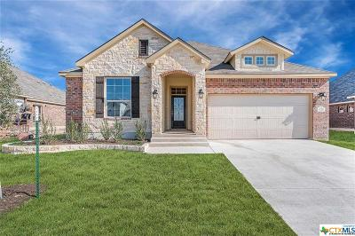 Bell County Single Family Home For Sale: 7720 Kendall Hill Drive
