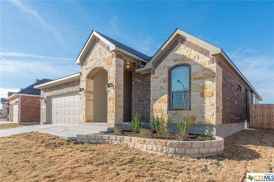 Temple, Belton Single Family Home For Sale: 727 Dunford Drive