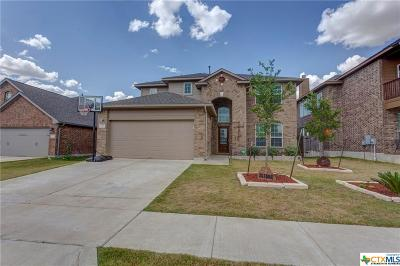 San Marcos Single Family Home For Sale: 310 Field Corn