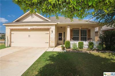 San Antonio Single Family Home For Sale: 27226 Trinity Cross