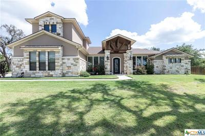 Belton Single Family Home For Sale: 390 Archstone Loop