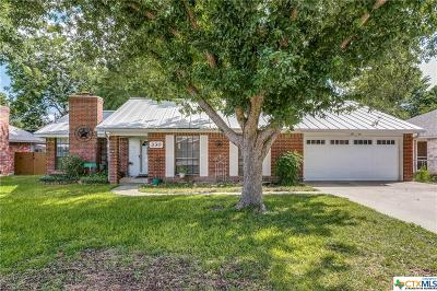 New Braunfels Single Family Home For Sale: 330 Paisano