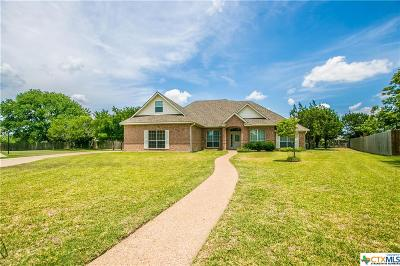 Belton Single Family Home For Sale: 205 Choke Canyon Cove