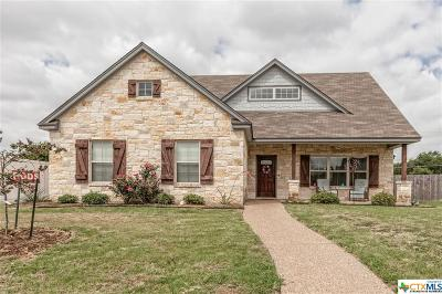 Robinson TX Single Family Home For Sale: $246,000