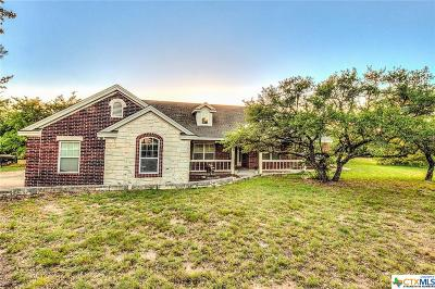 Liberty Hill TX Single Family Home For Sale: $450,000