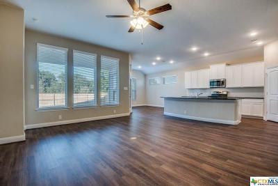 New Braunfels Single Family Home For Sale: 644 Nett
