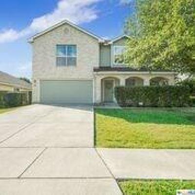 New Braunfels Single Family Home For Sale: 307 Big Hawk
