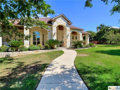 New Braunfels TX Single Family Home For Sale: $595,000