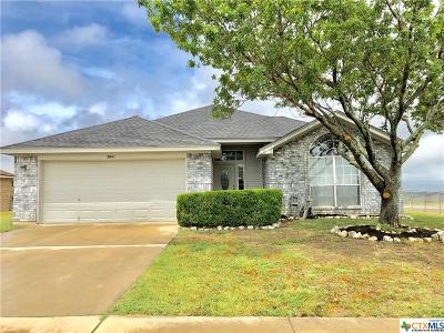 Killeen Single Family Home For Sale: 3801 Shellrock Drive