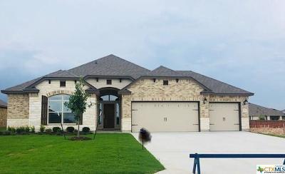 Belton TX Single Family Home For Sale: $276,173