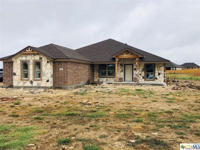 Salado TX Single Family Home For Sale: $334,000