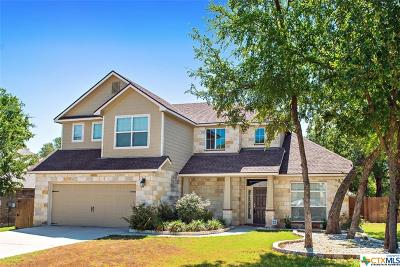 Belton Single Family Home For Sale: 2600 Twin Ridge Court