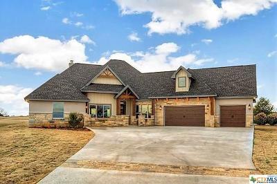 Burnet County Single Family Home For Sale: 105 Marina Drive