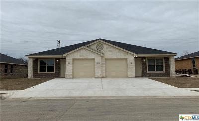 Killeen TX Single Family Home For Sale: $222,900