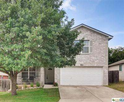 San Antonio Single Family Home For Sale: 9034 John Barrett Drive