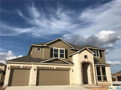New Braunfels TX Single Family Home For Sale: $320,741