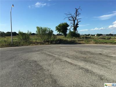 La Vernia Residential Lots & Land For Sale: 125 Micah Point Road