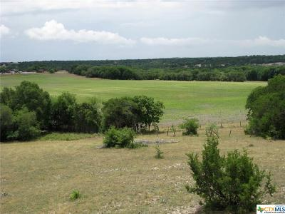 Coryell County Residential Lots & Land For Sale: Tbd County Road 343
