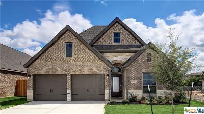 New Braunfels Single Family Home For Sale: 628 Arroyo Dorado