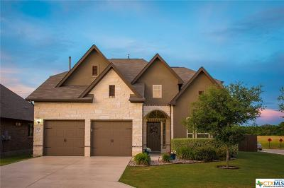 New Braunfels Single Family Home For Sale: 2051 Pecan Bend