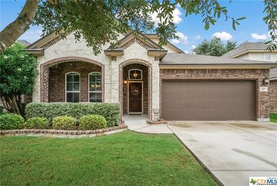 Cibolo Single Family Home For Sale: 257 Flint