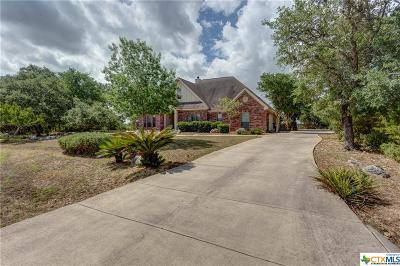 New Braunfels Single Family Home For Sale: 969 Pinnacle