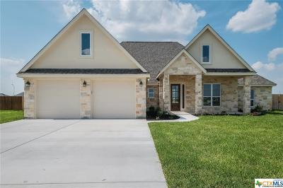 Seguin Single Family Home For Sale: 1462 Prairie Pass