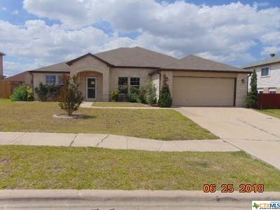 Single Family Home For Sale: 6001 Graphite Drive
