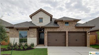 San Marcos Single Family Home For Sale: 365 Lacey Oak Loop