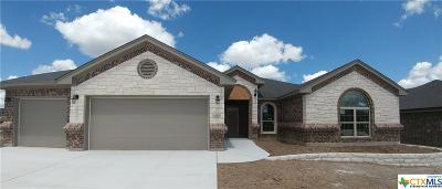 Killeen TX Single Family Home For Sale: $283,000