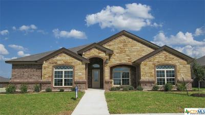 Killeen TX Single Family Home For Sale: $320,000