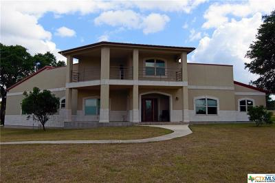 New Braunfels Single Family Home For Sale: 347 River Chase