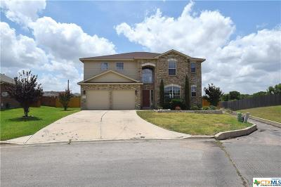 Harker Heights Single Family Home For Sale: 637 Tundra